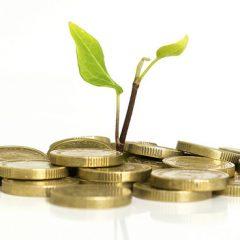 Función de las finanzas en las PyMEs